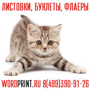 Буклеты недорого флаеры дешево печать в Жулебино Типография в Люберцах