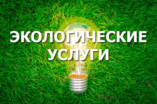 Компания Риалфорс. Экологическая документация и услуги
